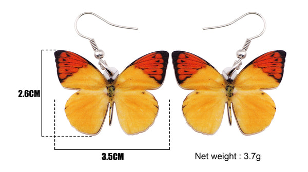 Two Tone Butterfly Earrings  - Zaida Fashions
