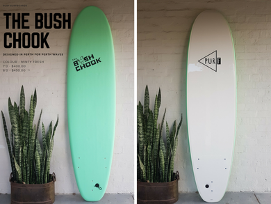 THE BUSH CHOOK FOAMIE LONGBOARD