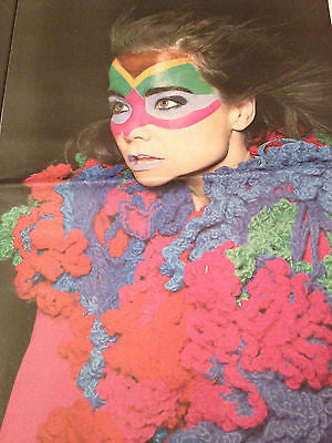 BJORK PHOTO OBSERVER INTERVIEW FEB 2015 PHOEBE FOX JAMIE DORNAN CHARLIE XCX
