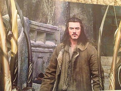 The Hobbit Battle of the Five Armies Mail Collectors Edition Lee Pace Luke Evans