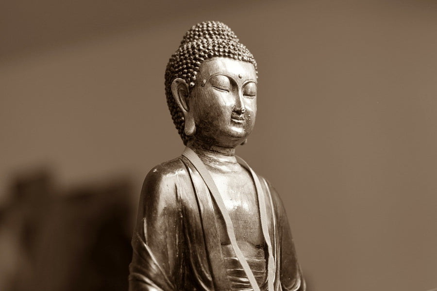 7 Different Types of Buddhist Meditations