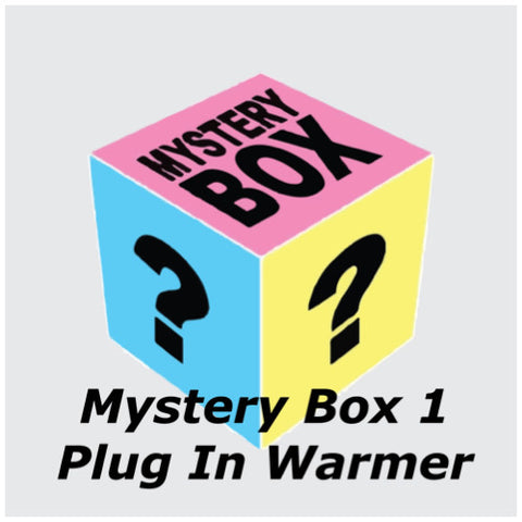Mystery Box 1 - Plug In Warmer