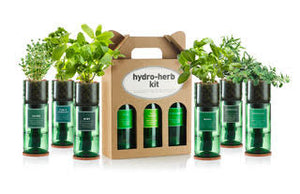 Hydro-herb Kits