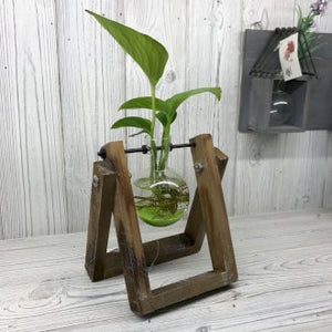 Hydroponic Pots - Wooden Frame Single Vase