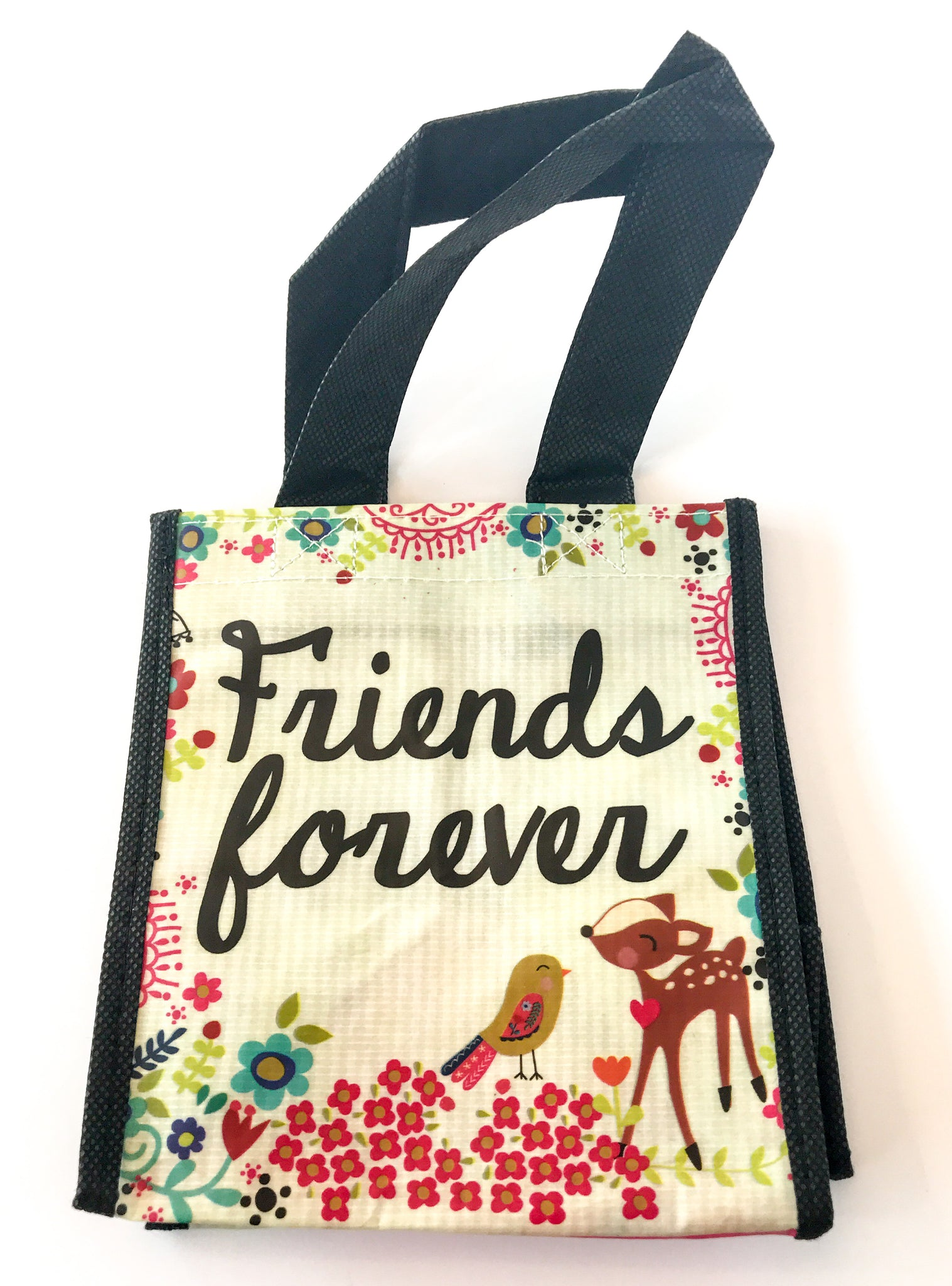 Recycled Plastic Giftbag (Small) - Friends Forever