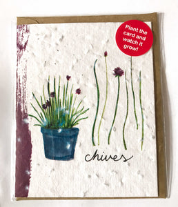 Plant a Card - Chive Pot