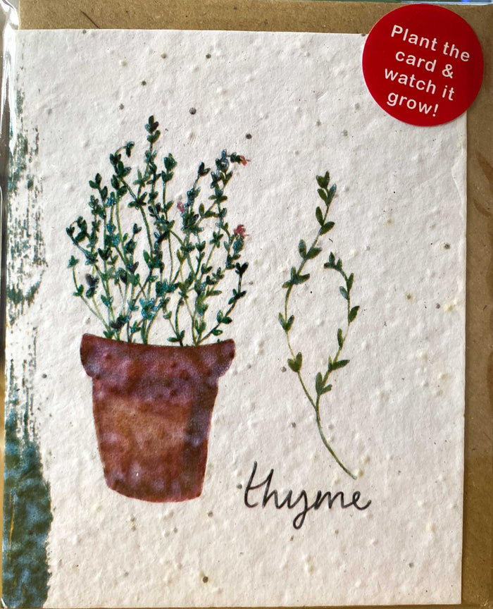 Plant a Card - Thyme Pot