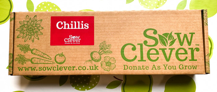 Sow Clever Grow Your Own Kits - Chillis