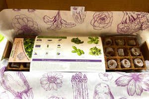 Sow Clever Grow Your Own Kits - Herby Salad