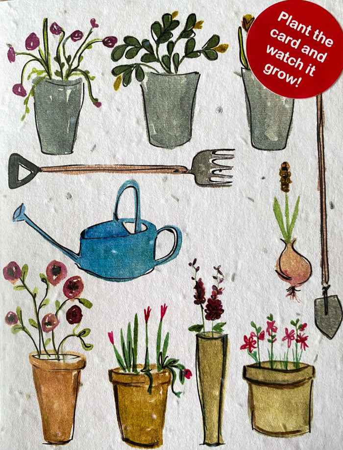 Plant a Card - Wildflower Pots