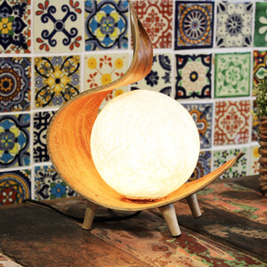 Natural Coconut Lamps - Choice of 3 Designs