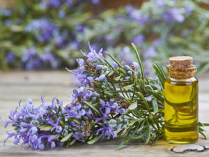 Goloka Natural Essential Oils - Rosemary
