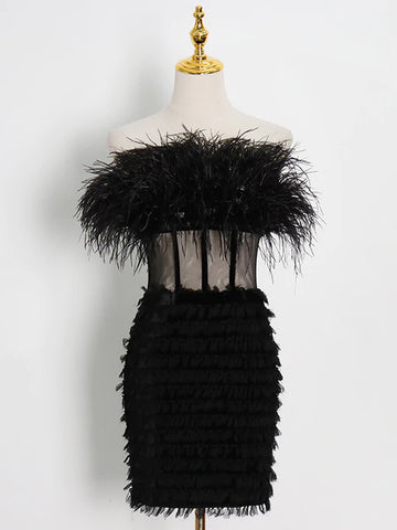 CIERA Feathers Dress