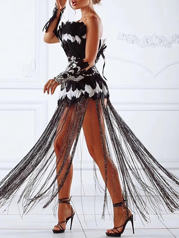 SELLA Corset Feathers Tassel Dress