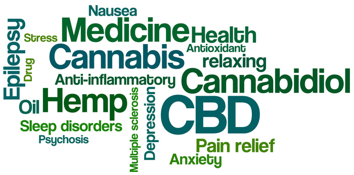CBD oil for pain, anxiety and more