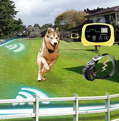 for customers looking to contain more than one dog at a given time the 2 dog electric fence is considered to be the best wireless dog fence system