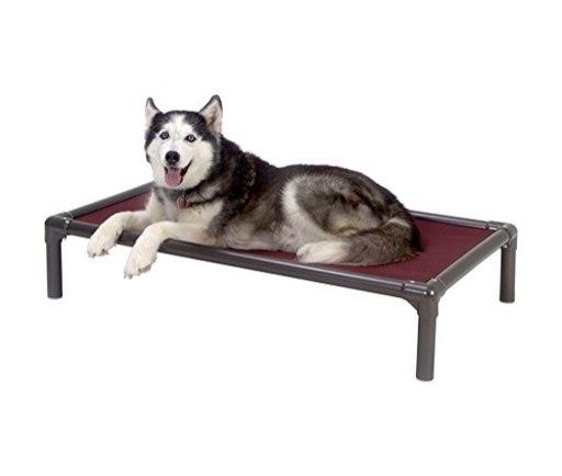 Large Chewproof Dog Bed by Kuranda - Elevated