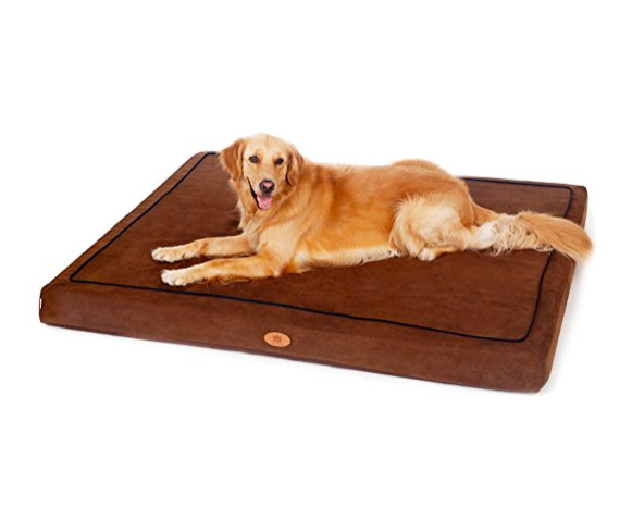 Memory Foam Dog Bed by PetFusion - Assorted Colors
