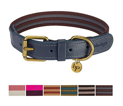 Flexible Leather/Polyester Dog Collar by Blueberry Pet - Assorted Colors/Sizes