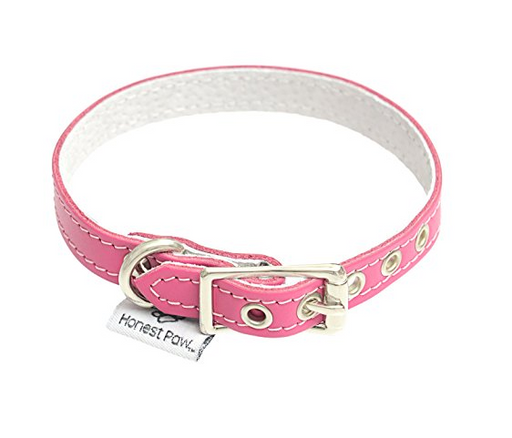 Durable Leather Dog Collar by Honest Paw - Assorted Colors/Sizes