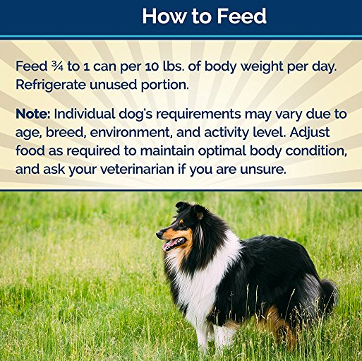 Grain-Free Wet Dog Food without Corn by Blue Basics