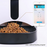 Automatic Pet Feeder for Dogs by WOpet - Controlled by Smartphone
