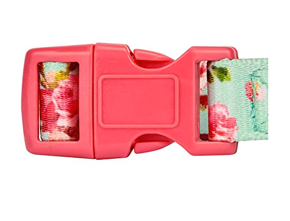 Fashionable Dog Collars by Blueberry Pet - Assorted Designs/Sizes