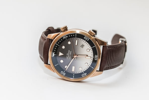 Balticus Grey Seal Bronze