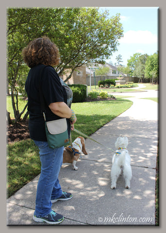 Melissa (aka Barking from the Bayou) takes WoofPack for a stroll with expert testers Bentley and Pierre!