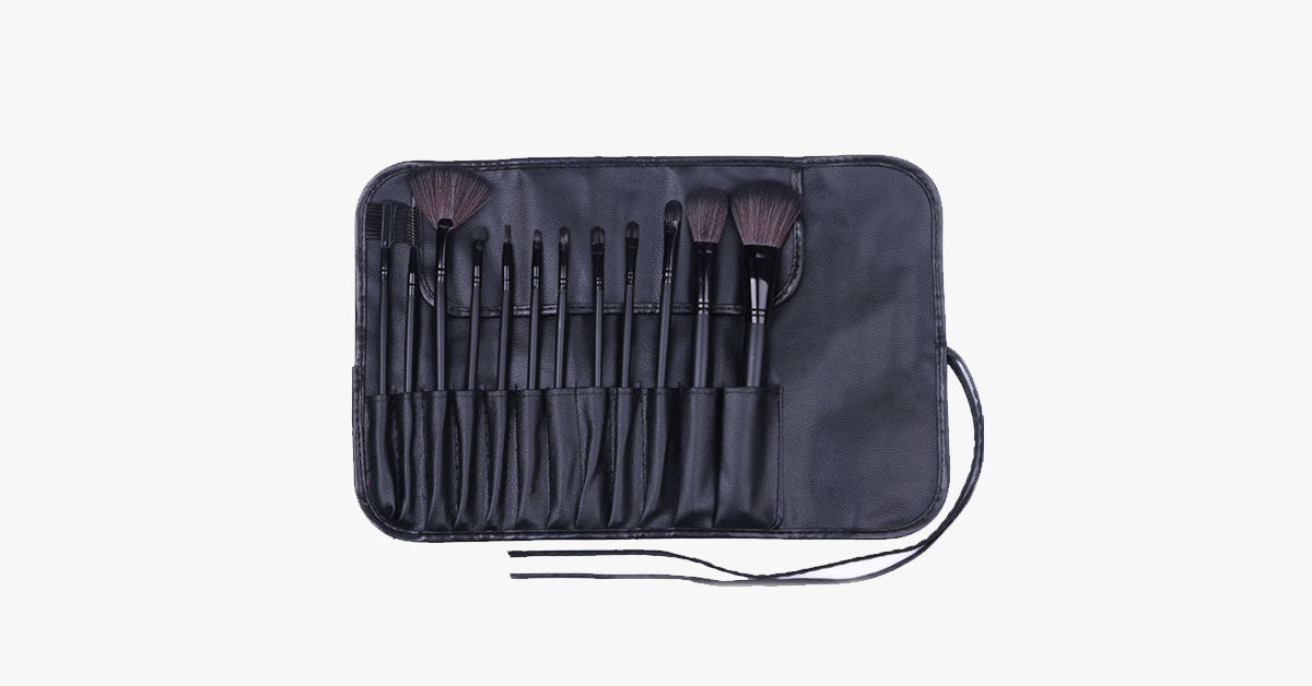 12 Piece Professional Black Brush Set - FREE SHIP DEALS