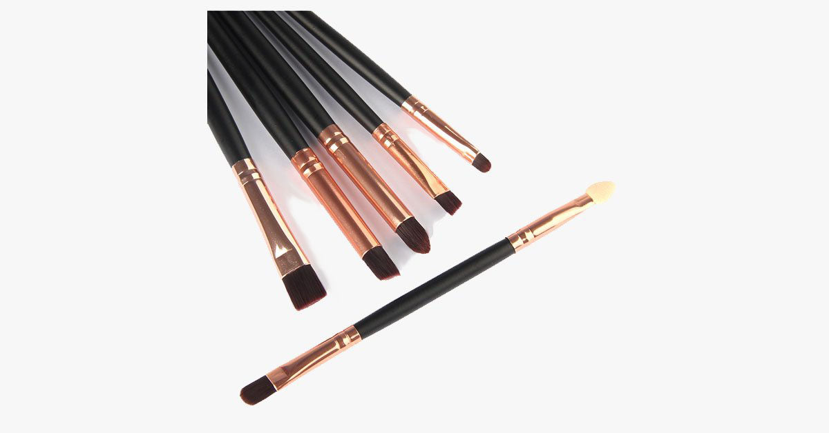 6 Piece Professional Brush Set - FREE SHIP DEALS