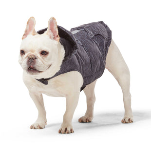 Free Country Dog Down Reversible Jacket - Striation Black - XS
