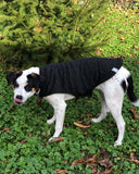 Dog Mountain Fleece Jacket