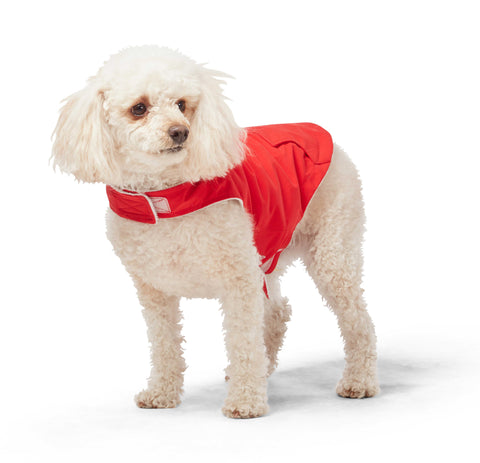 Free Country Dog Raincoat - Poppy Red - XS