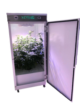 Buddy Grow Box