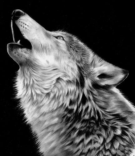 HOWLING WOLF/WOLVES INSPIRED MUSIC & NATIVE AMERICAN CD, MEDITATION, RELAXATION