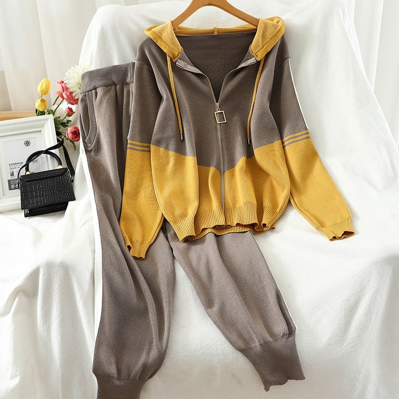 Casual Tracksuit Two Piece Set Hoodies Loose Knitting