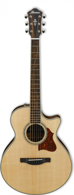 Ibanez AE205JR-OPN 3/4 - soundstore-finland