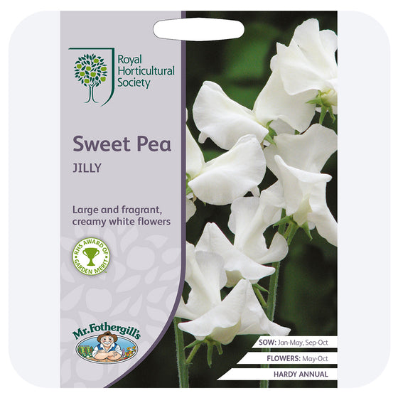 Sweet Pea 'Jilly' Seeds