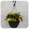 Hanging Basket Shade 4