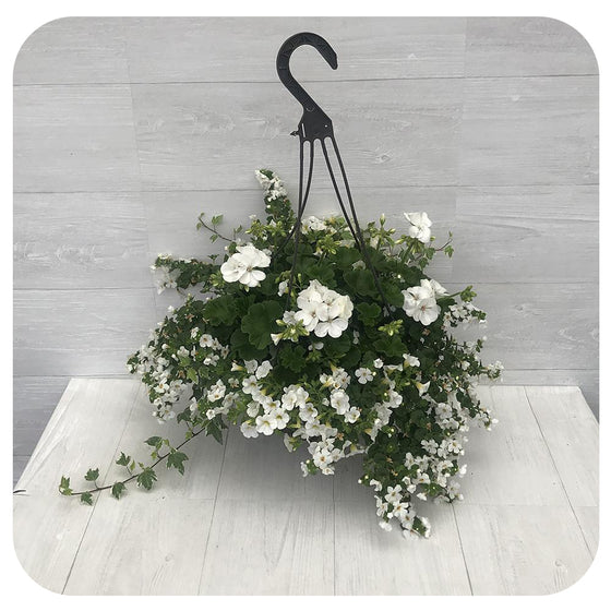 Hanging Basket White Mix