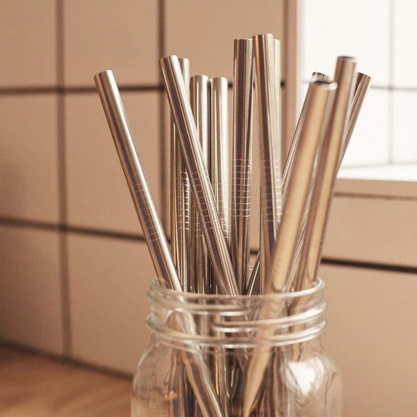 Metal Straws and Brush Set