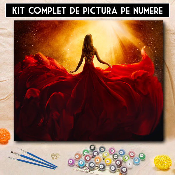 Kit Pictura pe Numere - Atractie