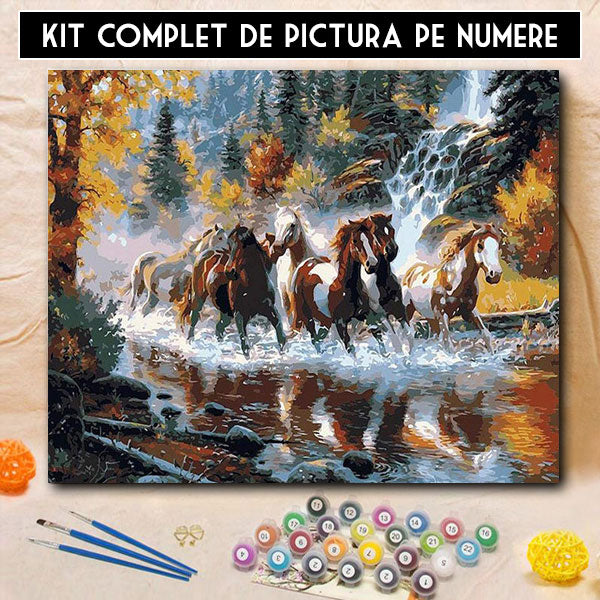 Kit Pictura pe Numere - Avant Pursange