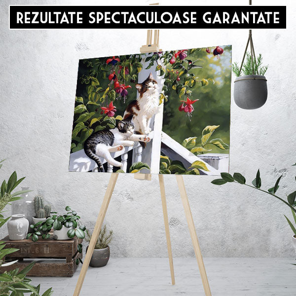 Kit pictura pe numere - Relaxare