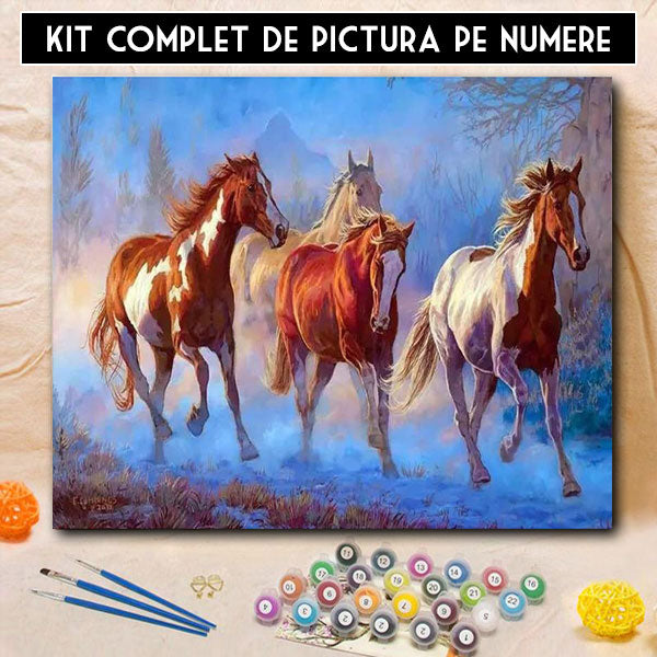 Kit pictura pe numere - Galop Nestapanit