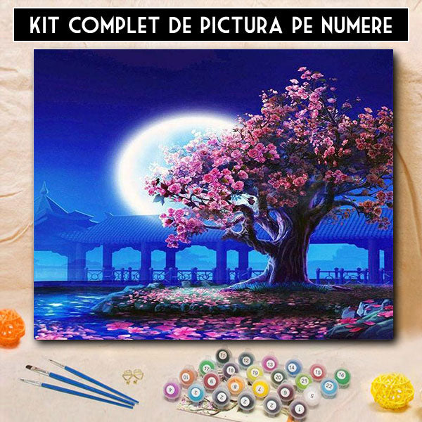 Kit Pictura Pe Numere Misterul