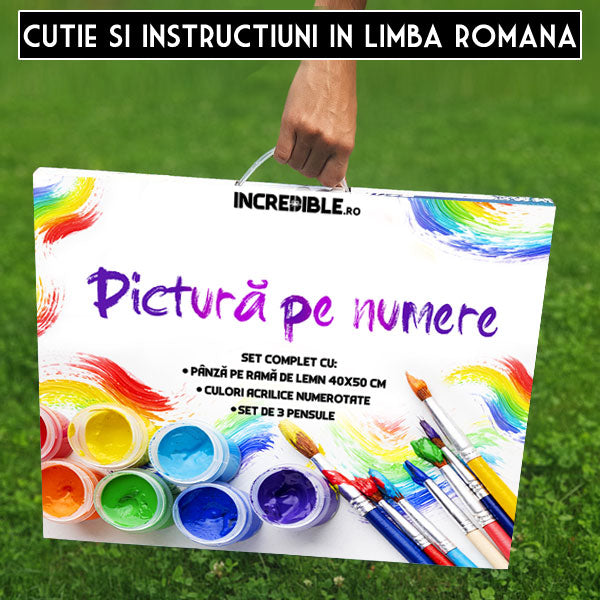 Kit Pictura pe Numere  Romantism