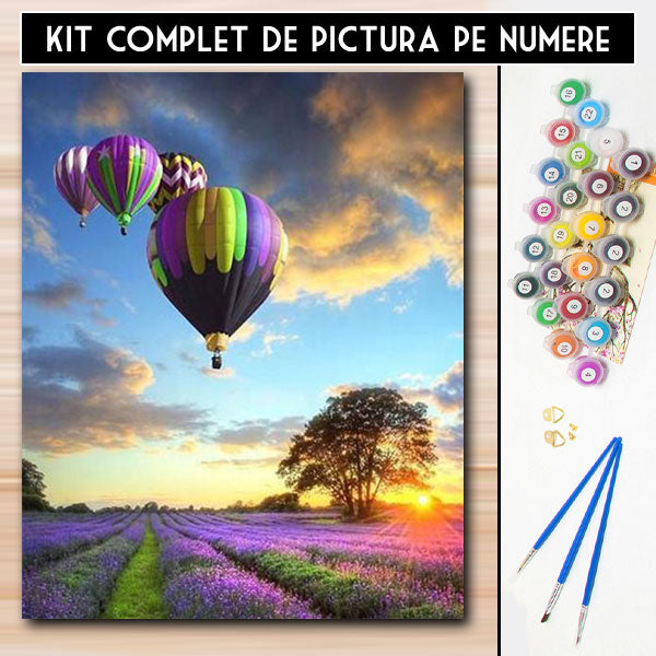 kit pictura pe numere culori