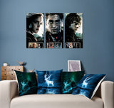 Harry Potter 3 Piece Framed Canvas HP0081 - - Ineffable Shop